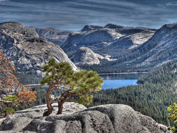 Wall Art - Photograph - Lake Tenaya From Olmsted Point by Joe Schofield