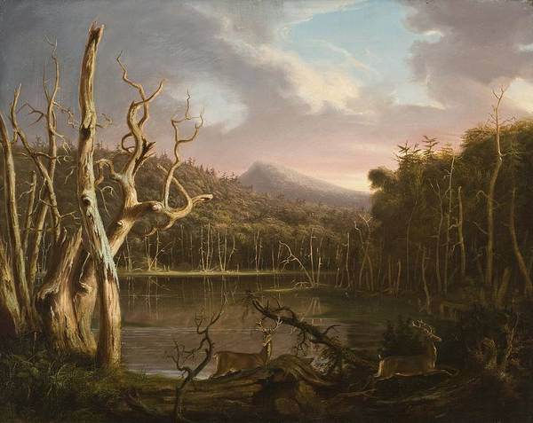 Upstate New York Painting - Lake With Dead Trees  by Thomas Cole
