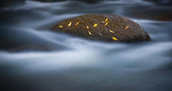 Photograph - Landed On The Rock by Joye Ardyn Durham