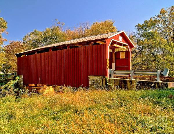 Photograph - Landis Mill Covered Bridge by Nick Zelinsky