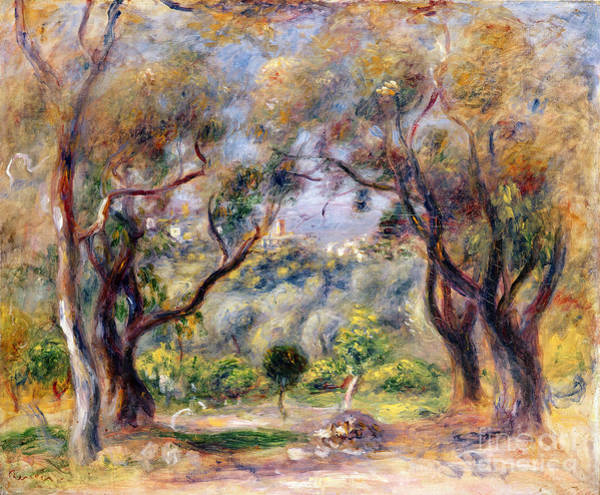 Paysage Wall Art - Painting - Landscape At Cagnes by Pierre Auguste Renoir
