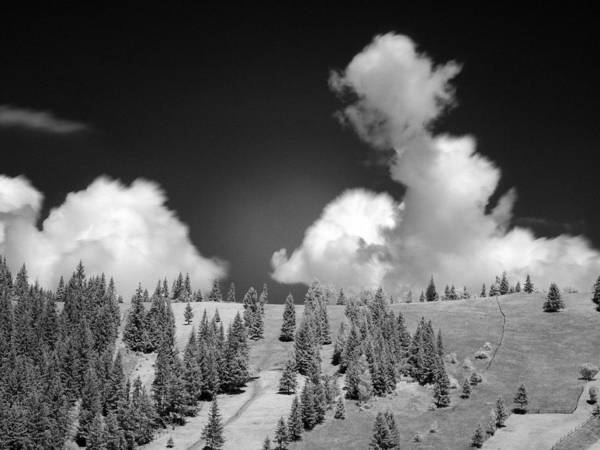 Photograph - Landscape In Infrared by Odon Czintos