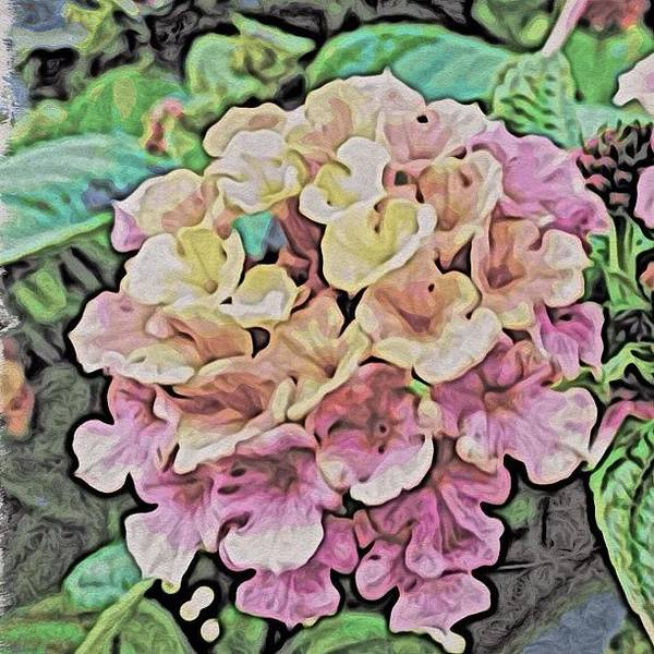 Abstract Flowers Wall Art - Photograph - Lantana by Travel Designed