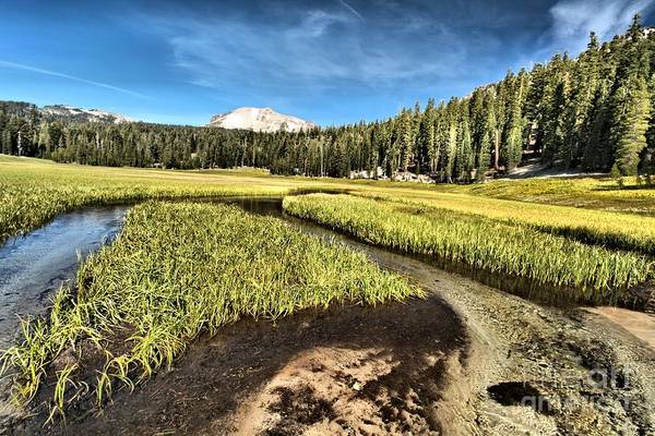 Photograph - Lassen Meadows by Adam Jewell