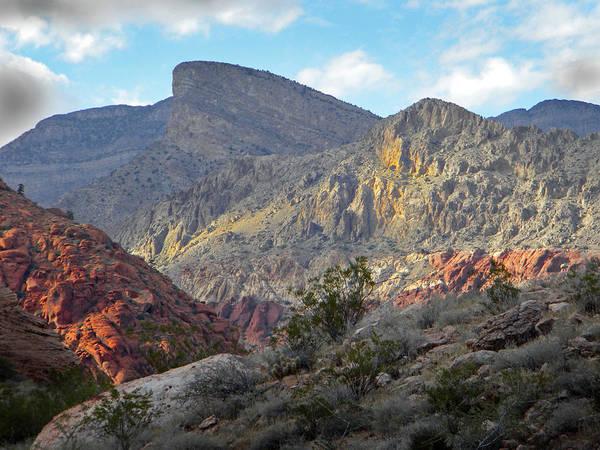 Photograph - Last Desert Light by Frank Wilson