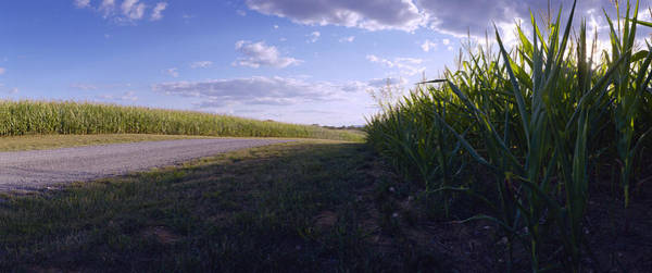Monocacy Wall Art - Photograph - Last Harvest - Best Farm by Jan W Faul