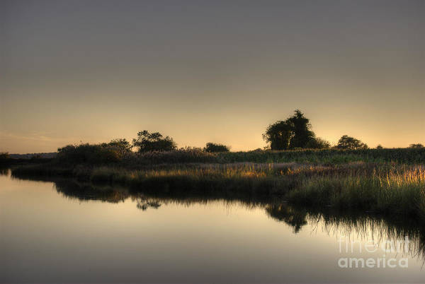 Photograph - Last Light Of The Day by David Gordon
