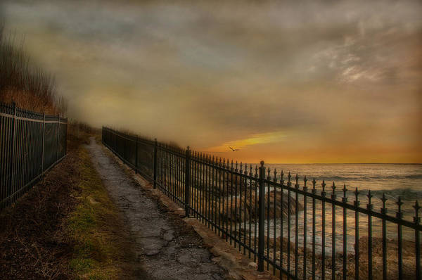 Newport Ri Wall Art - Photograph - Last Light by Robin-Lee Vieira