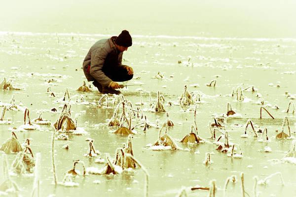 Photograph - Last Man Standing by Emanuel Tanjala