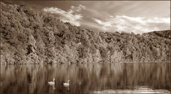 Photograph - Late Afternoon At The Lake - S by David Dehner