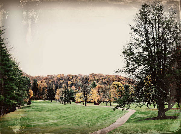 Photograph - Late Fall In Waynesville by Paulette B Wright
