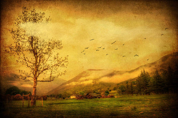 Lake District Digital Art - Late Spring by Svetlana Sewell