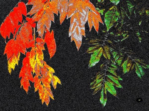 Borden Digital Art - Lavish Leaves 5 by Will Borden