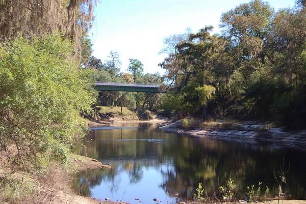 Photograph - Lazy River by Judy Hall-Folde