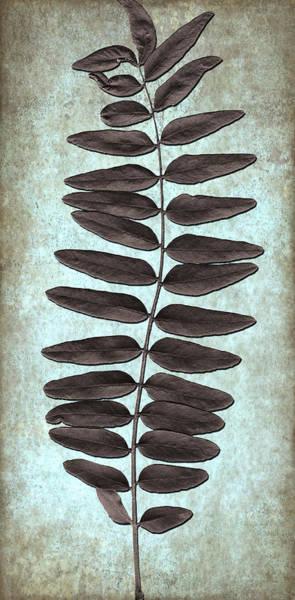 Digital Art - Leaf Art by Milena Ilieva