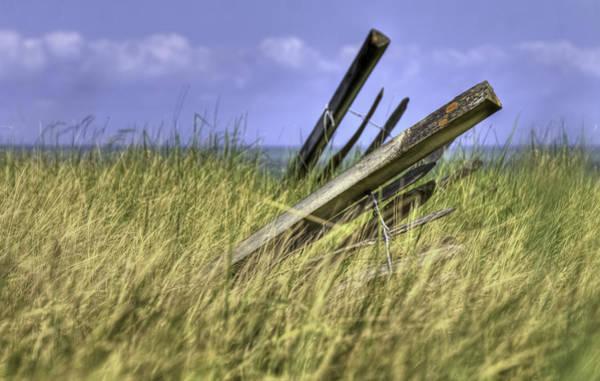 Windswept Photograph - Leaning by Nigel Jones
