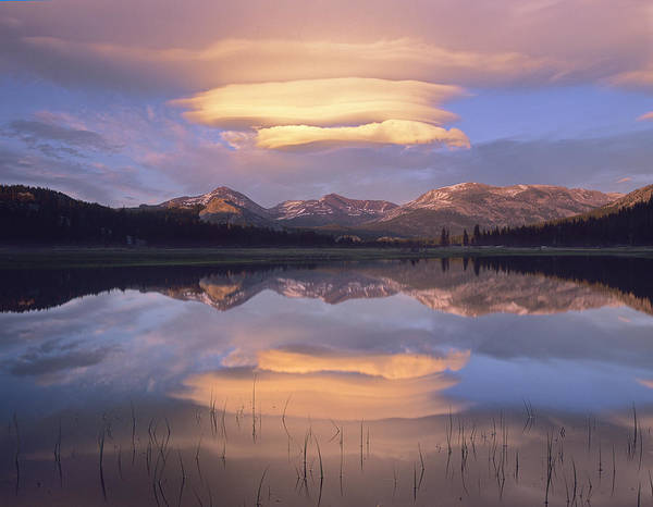 Photograph - Lenticular Clouds Over Mount Dana Mount by Tim Fitzharris