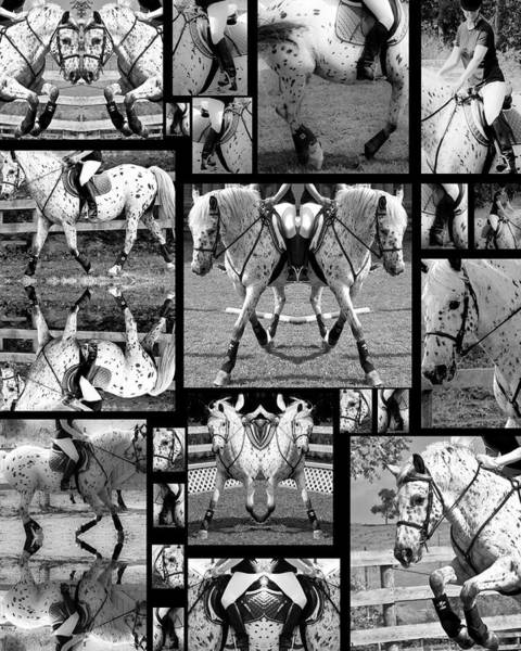 Jumping Photograph - Leopard Appaloosa Collage by Betsy Knapp