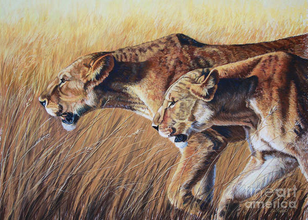 Tan Cat Wall Art - Painting - Let The Hunt Begin by Deb LaFogg-Docherty