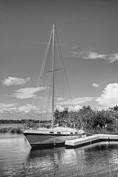 Photograph - Let's Set Sail by Barry Jones