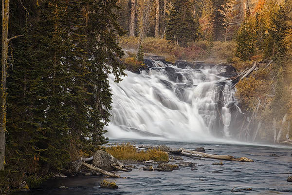 Whitewater Falls Photograph - Lewis Falls - Yellowstone by Andrew Soundarajan