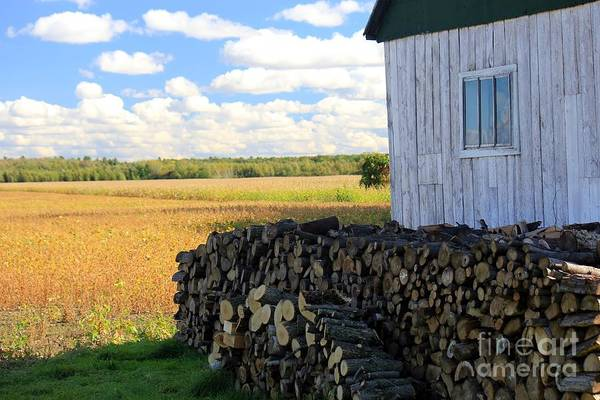 St Ignace Wall Art - Photograph - Life In The Countryside by Sophie Vigneault