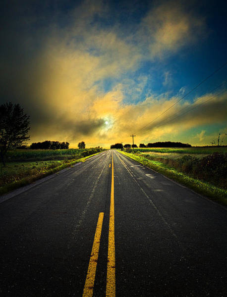 Natur Wall Art - Photograph - Life Is A Highway by Phil Koch