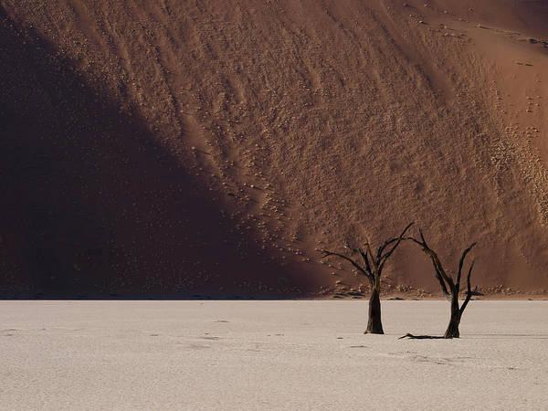 Sossusvlei Photograph - Light And Shadow by Nina Papiorek