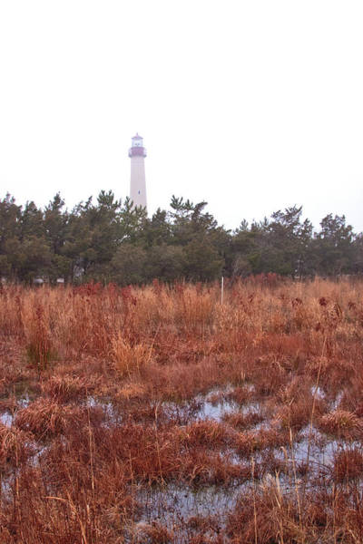 Photograph - Lighthouse And Fog by Tom Singleton