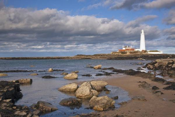 Oceanfront Photograph - Lighthouse Scenic, Northumberland by John Short
