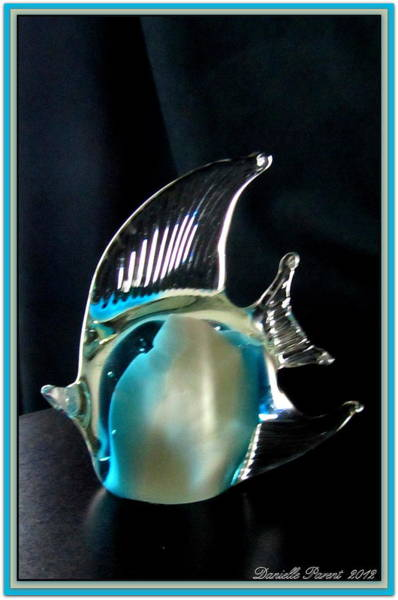 Photograph - Lights And Glass Study 1  Blue Fish by Danielle  Parent