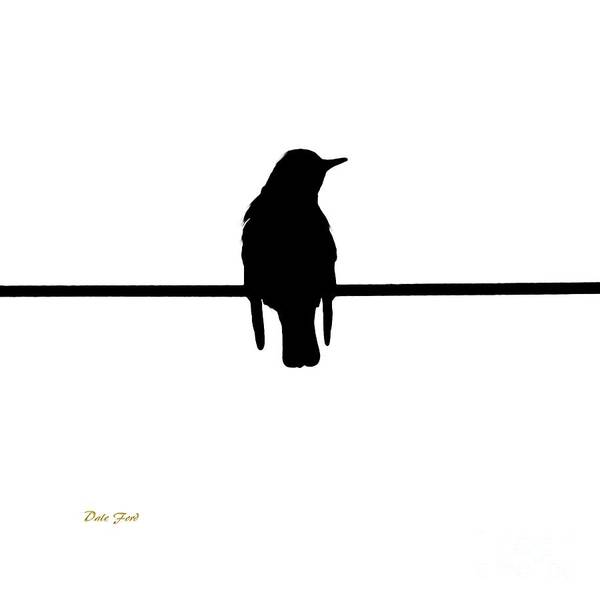 Digital Art - Like A Bird On The Wire by Dale   Ford