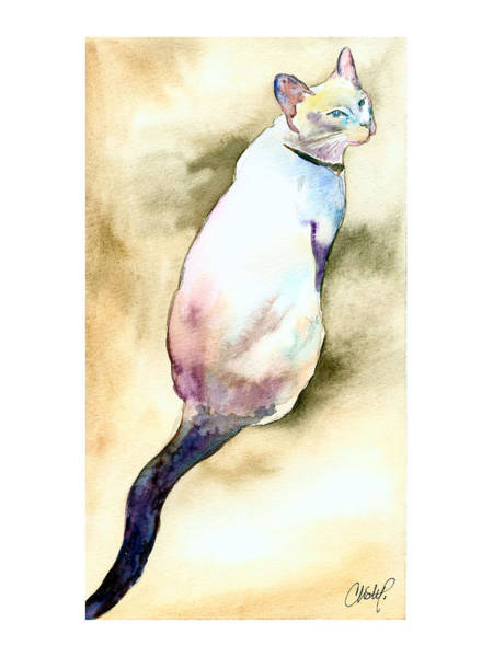 Painting - Lilac Point Siamese Cat by Christy Freeman Stark