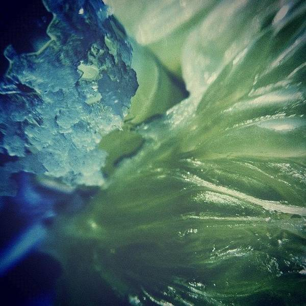 Eden Wall Art - Photograph - Lime And Salt by Dave Edens