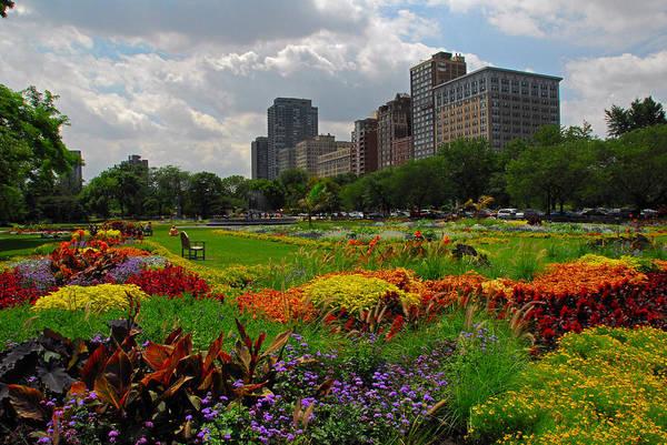 Photograph - Lincoln Park Landscape by Lynn Bauer