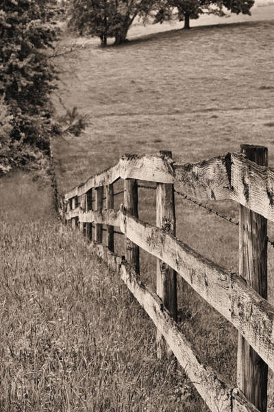 Warrenton Wall Art - Photograph - Lines Bw by JC Findley