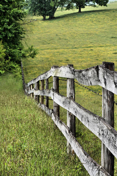 Warrenton Wall Art - Photograph - Lines by JC Findley