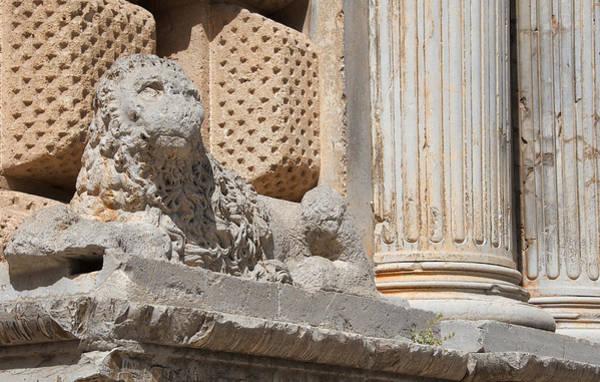 Lion Alhambra Art Print