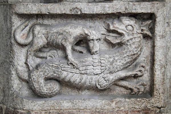 Lion And Dragon Art Print