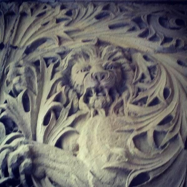 Wall Art - Photograph - #lion On #dekumbuilding #portland by Art Rocha