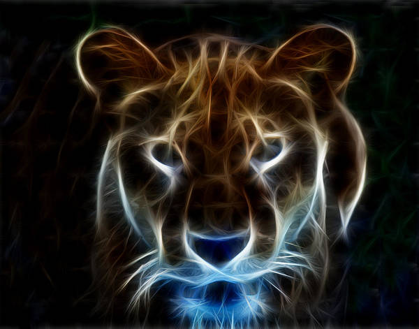 Photograph - Lioness Light Art by Maggy Marsh
