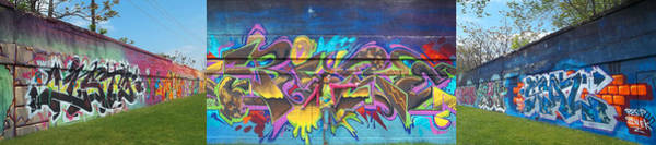 Photograph - Live Graffiti Triptych by Anne Cameron Cutri