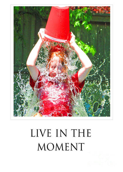 Photograph - Live In The Moment by Traci Cottingham