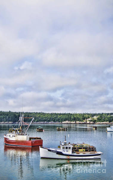 Photograph - Lobster Boats by Traci Cottingham