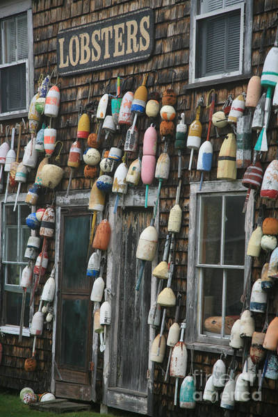 Wall Art - Photograph - Lobster Buoys by Timothy Johnson