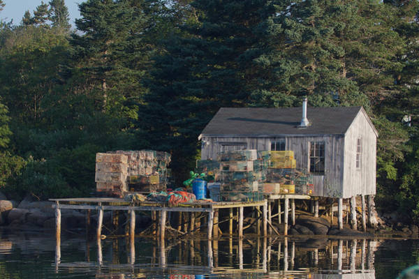 Photograph - Lobster Shack Prospect Harbor by Dale J Martin