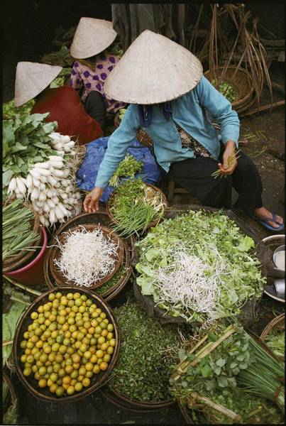 Hoi An Photograph - Local Farmers Selling Their Crop by Steve Raymer