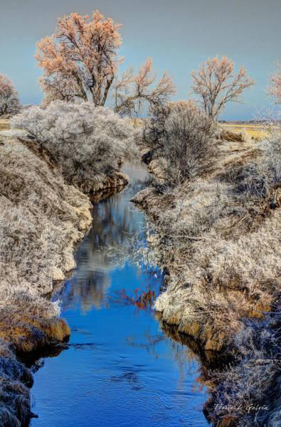 Laurel Hill Creek Photograph - Logan Creek In Blue by Terrie Galvin