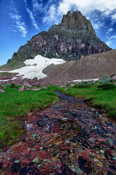 Art Print featuring the photograph Logan Pass View by David Buhler