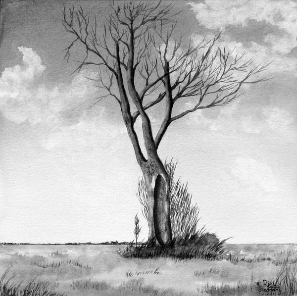 Painting - Lone Tree On The Prairie by Rich Stedman